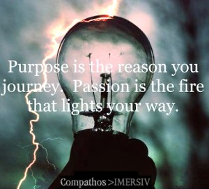 purpose passion IMERSIV